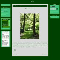 Skin vert bois par Aurore